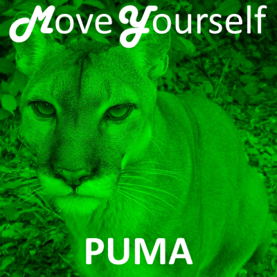 Move Yourself - PUMA